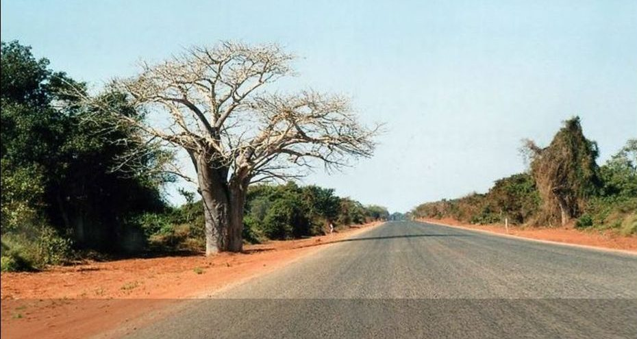 On the road Mozambico